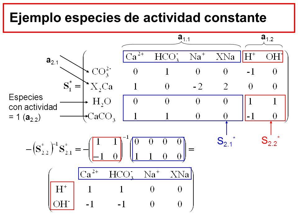 Ejemplo especies de actividad constante Especies con actividad = 1 (a 2.2 ) a 1.1 a 2.1 a 1.2 S 2.1 * S 2.2 *