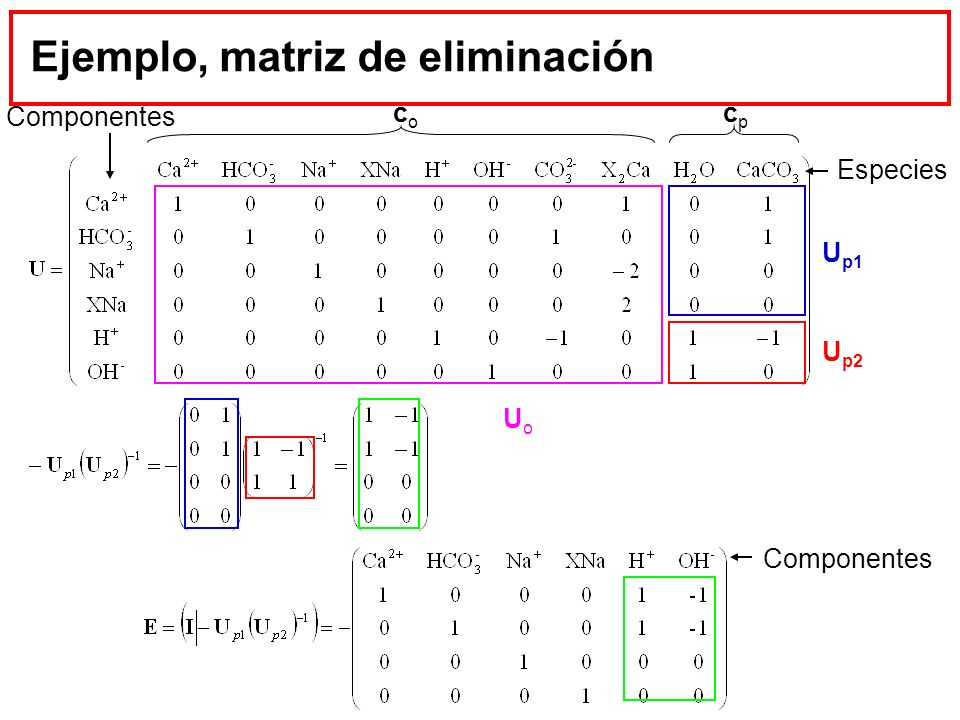 Ejemplo, matriz de eliminación cpcp coco U p2 U p1 UoUo Especies Componentes