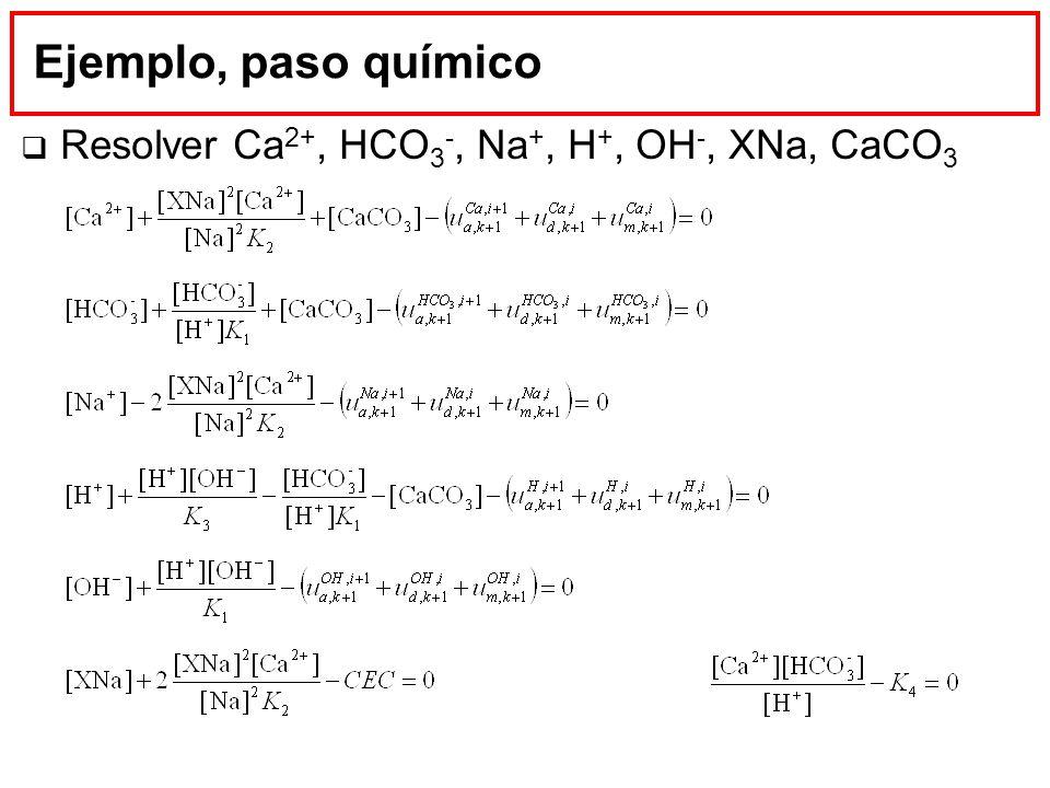 Ejemplo, paso químico Resolver Ca 2+, HCO 3 -, Na +, H +, OH -, XNa, CaCO 3
