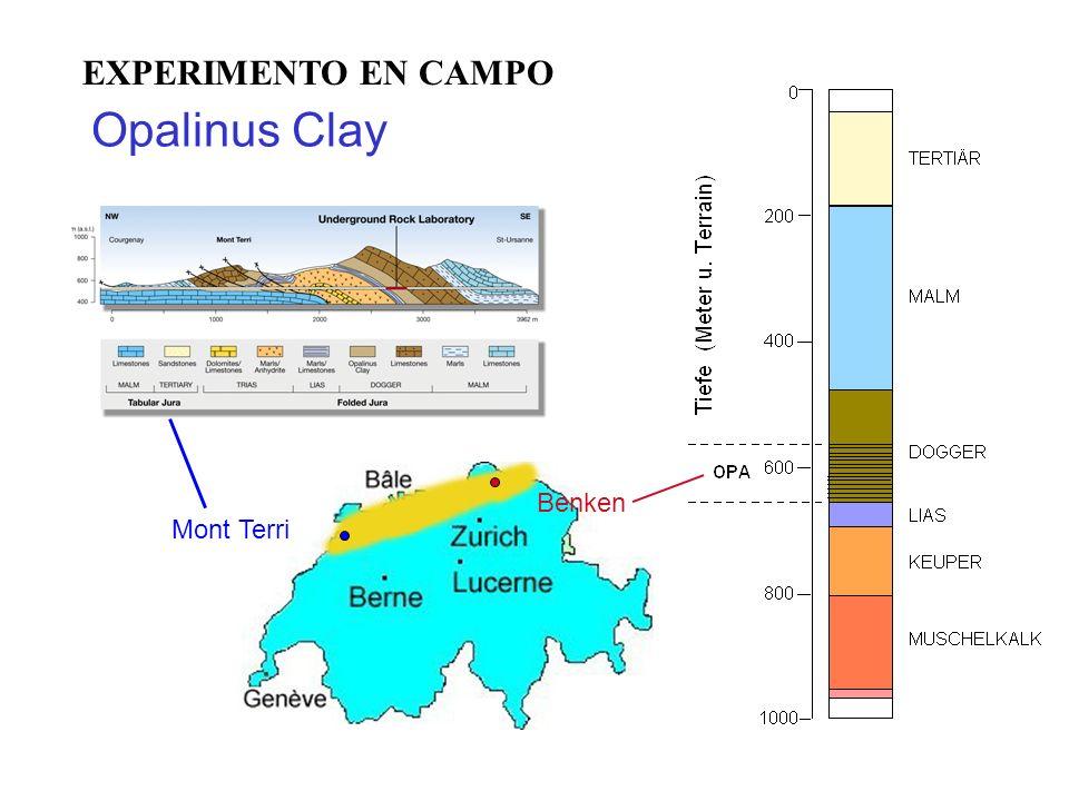 Opalinus Clay Benken Mont Terri EXPERIMENTO EN CAMPO