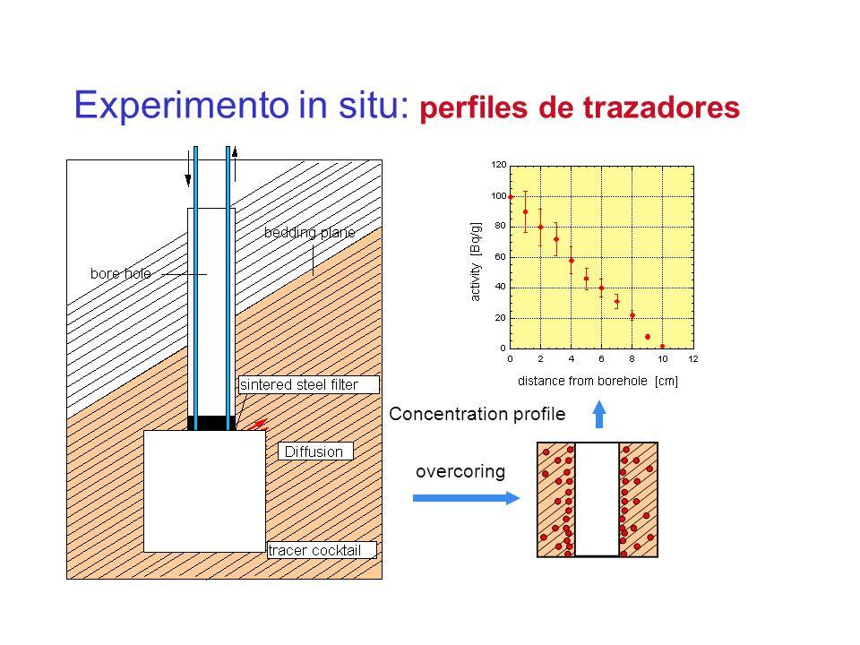 Experimento in situ: perfiles de trazadores Concentration profile overcoring