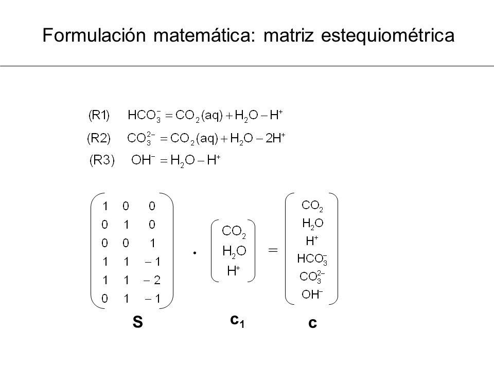Formulación matemática: matriz estequiométrica · = c c1c1 S