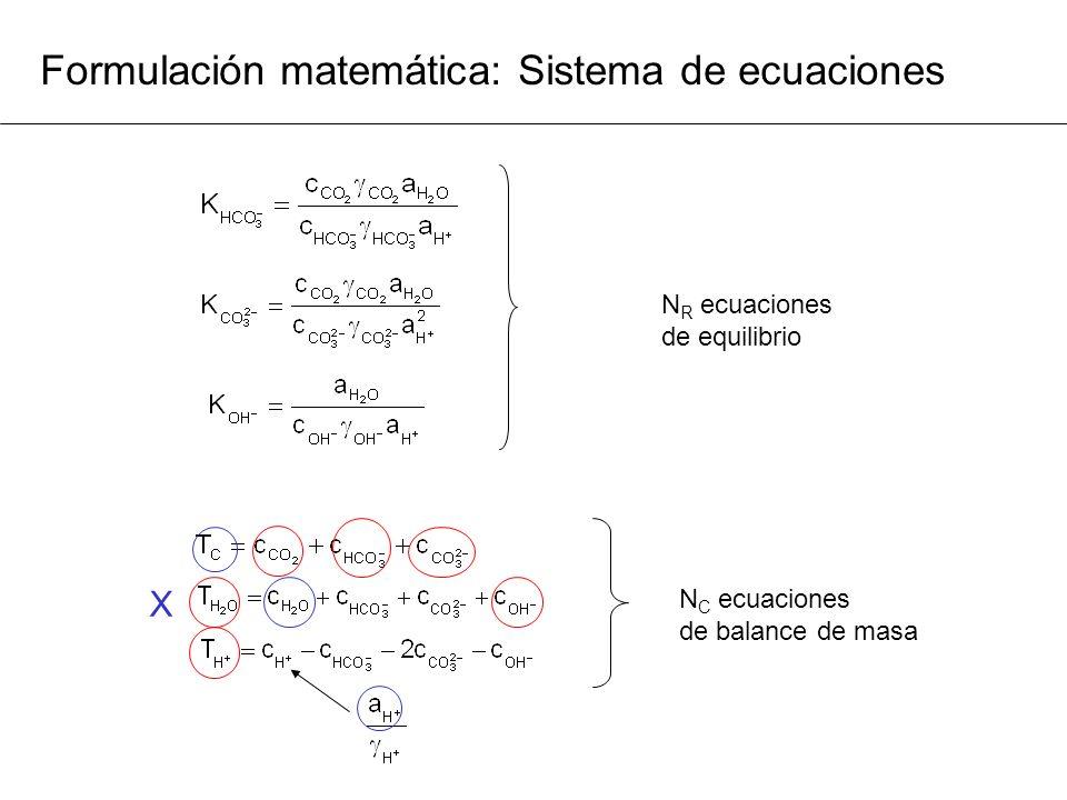 Formulación matemática: Sistema de ecuaciones N C ecuaciones de balance de masa N R ecuaciones de equilibrio X
