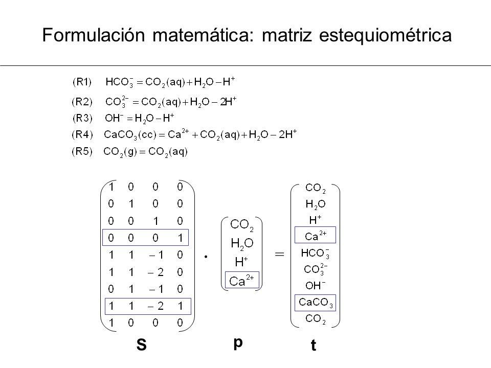 Formulación matemática: matriz estequiométrica · = t p S
