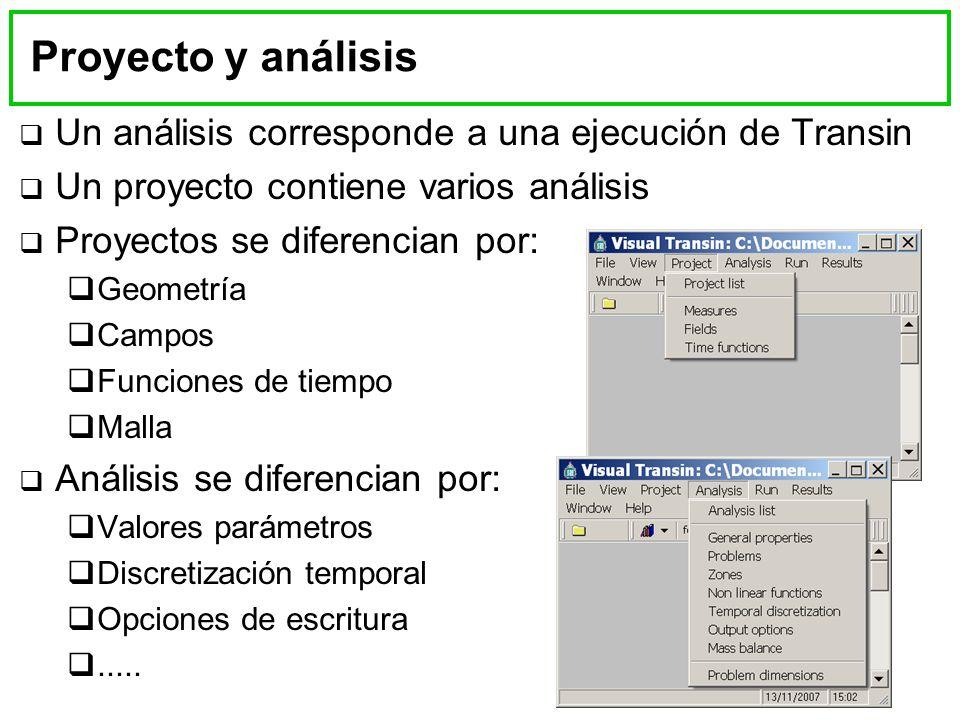 Un análisis corresponde a una ejecución de Transin Un proyecto contiene varios análisis Proyectos se diferencian por: Geometría Campos Funciones de tiempo Malla Análisis se diferencian por: Valores parámetros Discretización temporal Opciones de escritura.....