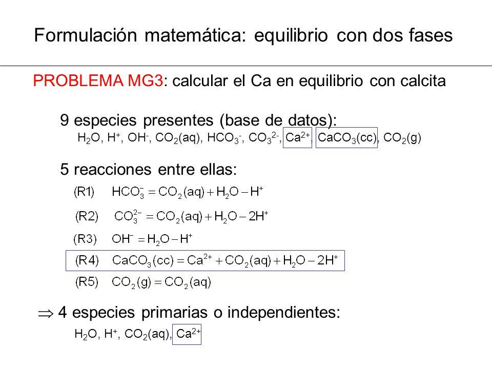 Formulación matemática: equilibrio con dos fases PROBLEMA MG3: calcular el Ca en equilibrio con calcita 9 especies presentes (base de datos): H 2 O, H