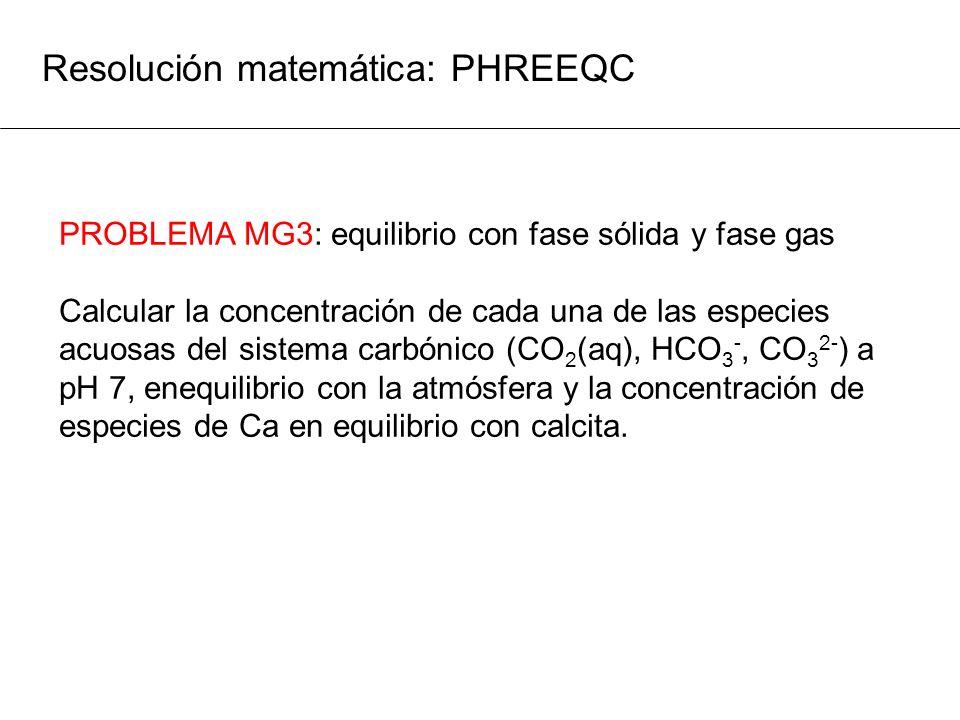Resolución matemática: PHREEQC PROBLEMA MG3: equilibrio con fase sólida y fase gas Calcular la concentración de cada una de las especies acuosas del s