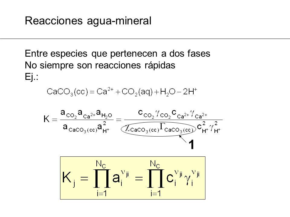 Formulación matemática: Sistema de ecuaciones · = c1c1 c c1c1 S S2S2 S1S1 c2c2 Log K + S 2 * log c 2 2 - S 1 * log c 1 1 = 0 T - S T ·c = 0 N C ecuaciones N R ecuaciones X