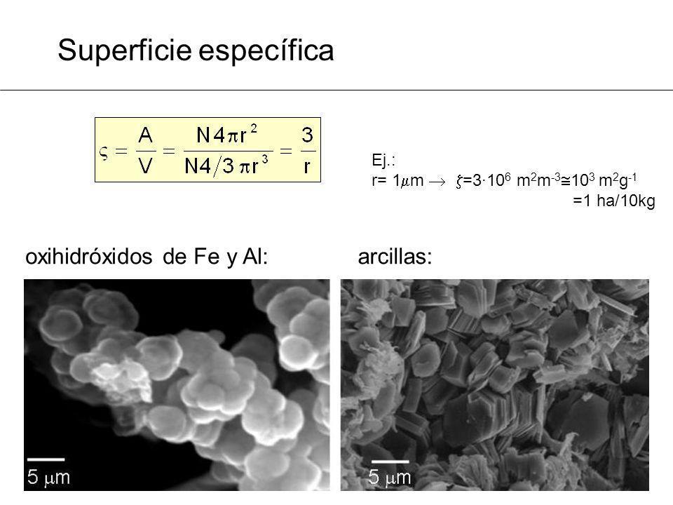 Superficie específica oxihidróxidos de Fe y Al:arcillas: Ej.: r= 1 m =3·10 6 m 2 m -3 10 3 m 2 g -1 =1 ha/10kg