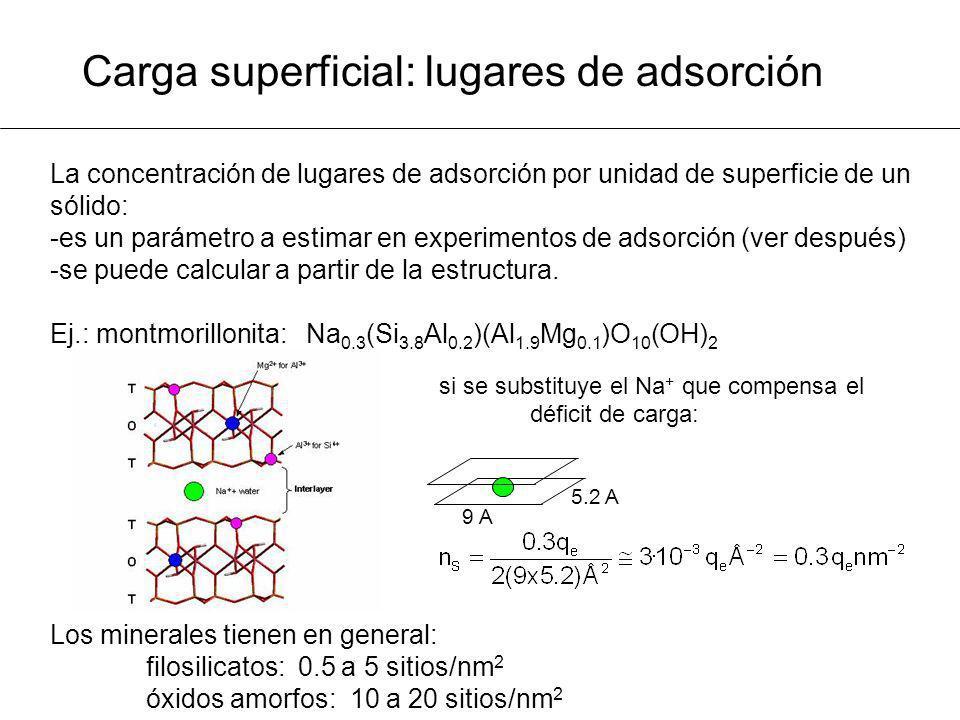 Carga superficial: lugares de adsorción La concentración de lugares de adsorción por unidad de superficie de un sólido: -es un parámetro a estimar en