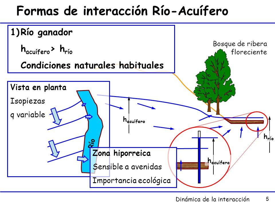 5 Formas de interacción Río-Acuífero 1)Río ganador h acuífero > h río Condiciones naturales habituales h acuífero h río h acuífero Vista en planta Iso