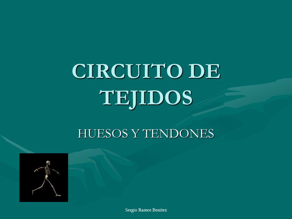 Sergio Ramos Benitez CIRCUITO DE TEJIDOS HUESOS Y TENDONES