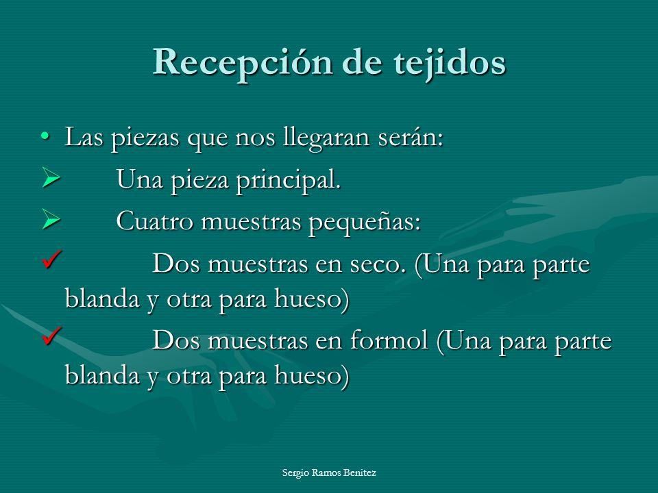 Sergio Ramos Benitez Recepción de tejidos Las piezas que nos llegaran serán:Las piezas que nos llegaran serán: Una pieza principal. Una pieza principa