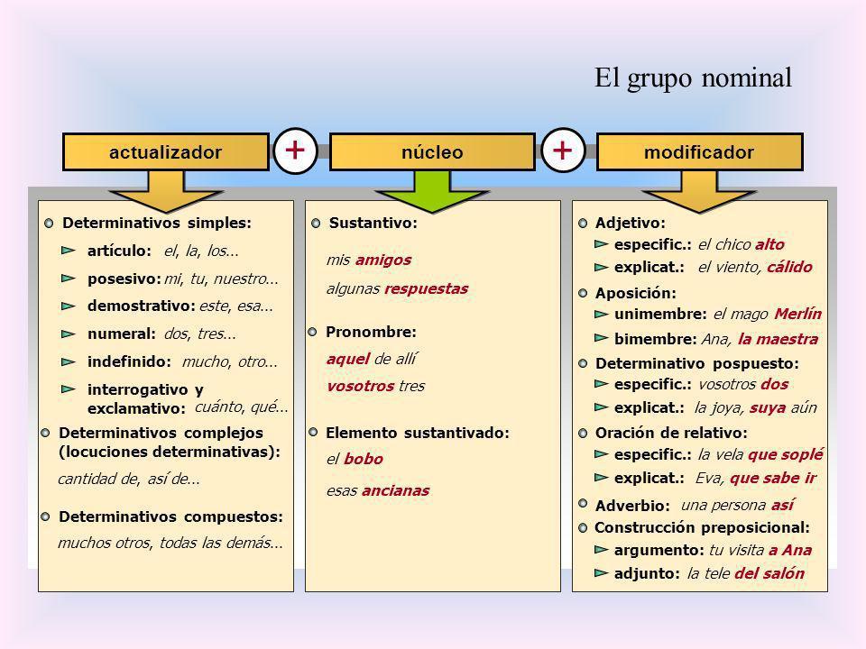 El grupo nominal + + Determinativos simples: núcleoactualizadormodificador cantidad de, así de... muchos otros, todas las demás... Determinativos comp