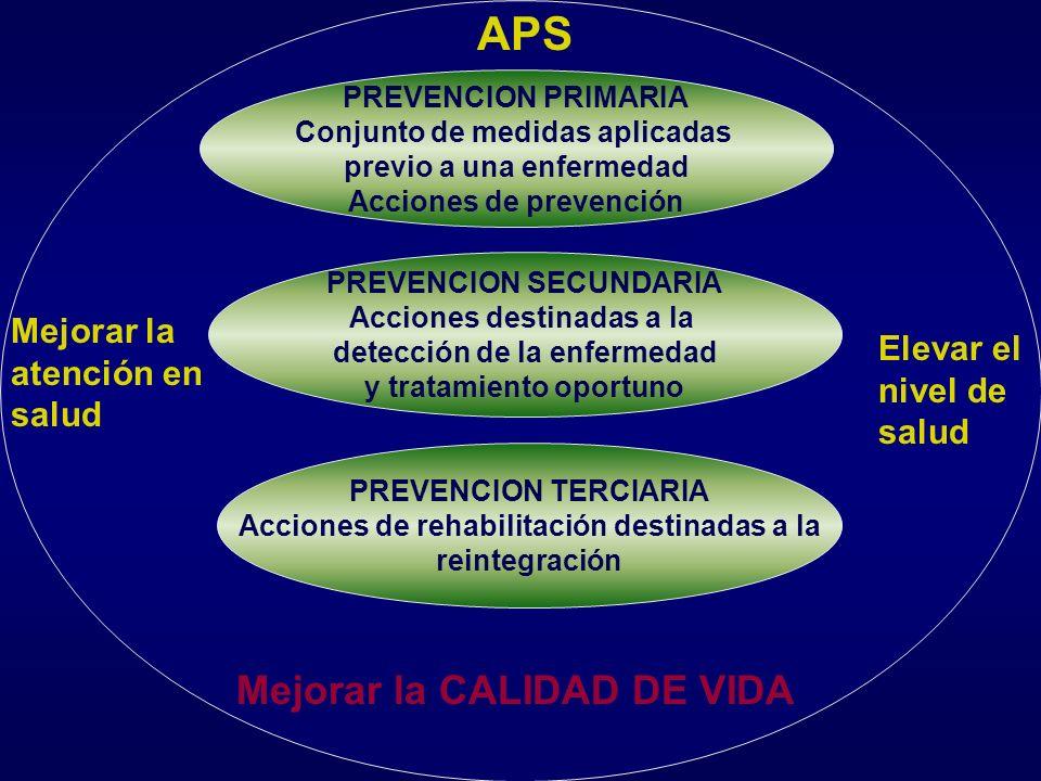 Dimensión programática programas planes actividades Dimensión organizacional Niveles de atención primario secundario terciario Dimensión metodológica
