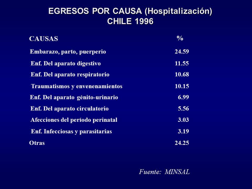 Principales Causas de Consultas, Nivel Primario % Hipertensión arterial9,3 Bronquitis y bronquiolitis aguda6,3 Rinofaringitis aguda4,7 Bronquitis crón