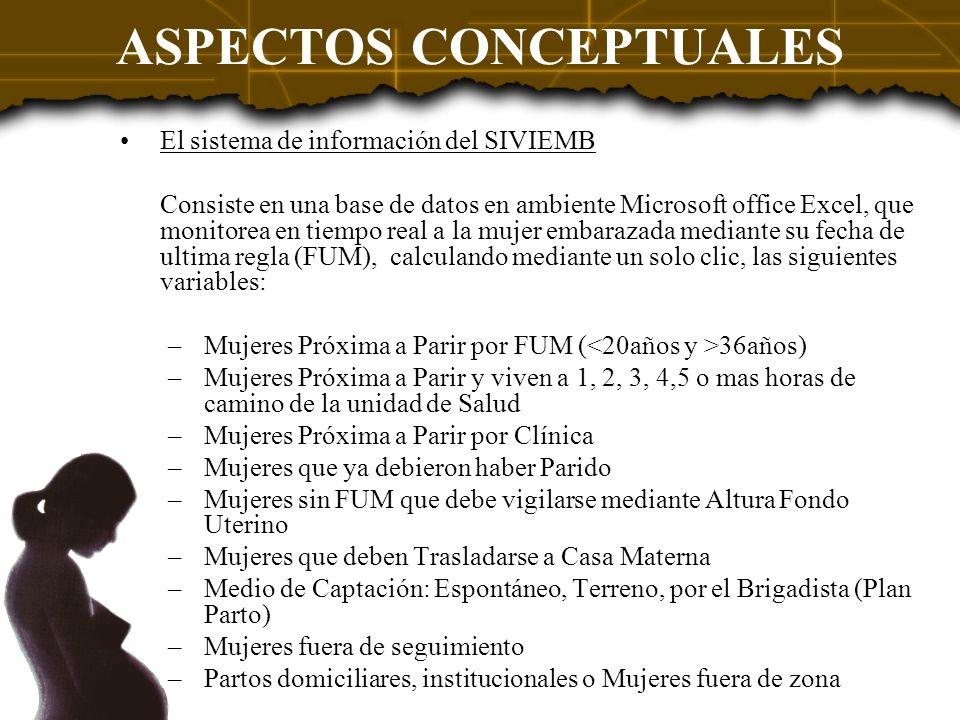 ASPECTOS CONCEPTUALES El sistema de información del SIVIEMB Consiste en una base de datos en ambiente Microsoft office Excel, que monitorea en tiempo