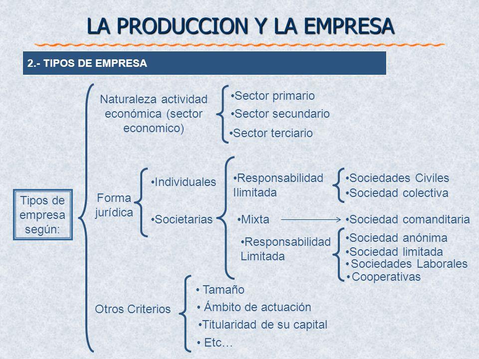 2.- TIPOS DE EMPRESA Sector primario Sector secundario Individuales Societarias Tamaño Ámbito de actuación Titularidad de su capital Forma jurídica Ot