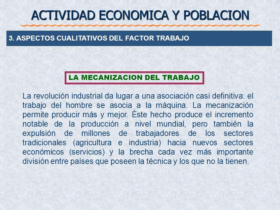 3. ASPECTOS CUALITATIVOS DEL FACTOR TRABAJO ACTIVIDAD ECONOMICA Y POBLACION LA ORGANIZACIÓN DEL TRABAJO Es la consecuencia de la división del mismo: s