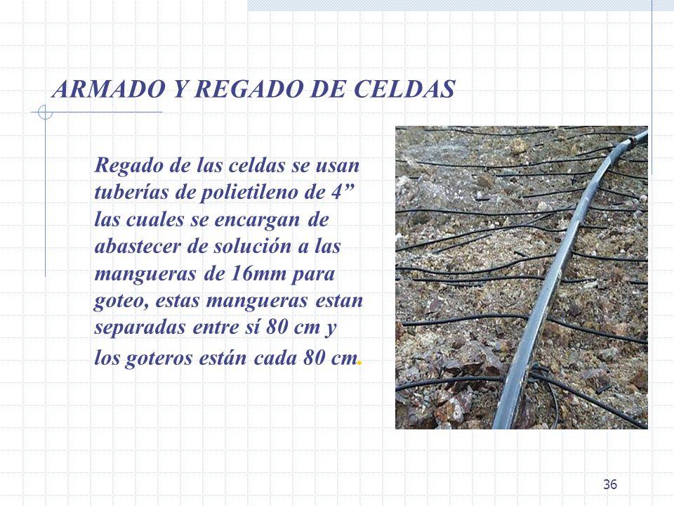 36 ARMADO Y REGADO DE CELDAS Regado de las celdas se usan tuberías de polietileno de 4 las cuales se encargan de abastecer de solución a las mangueras
