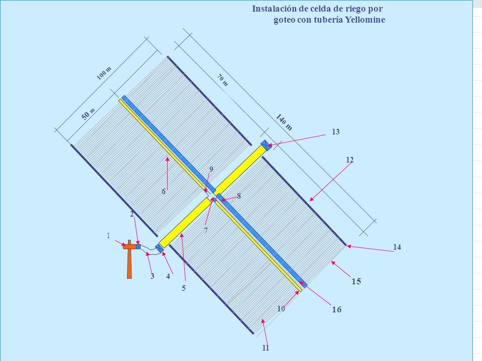 41 50 m 70 m 100 m 14 0 m 1 2 34 6 5 7 8 9 10 11 1212 14 1313 15 16 Instalación de celda de riego por goteo con tubería Yellomine