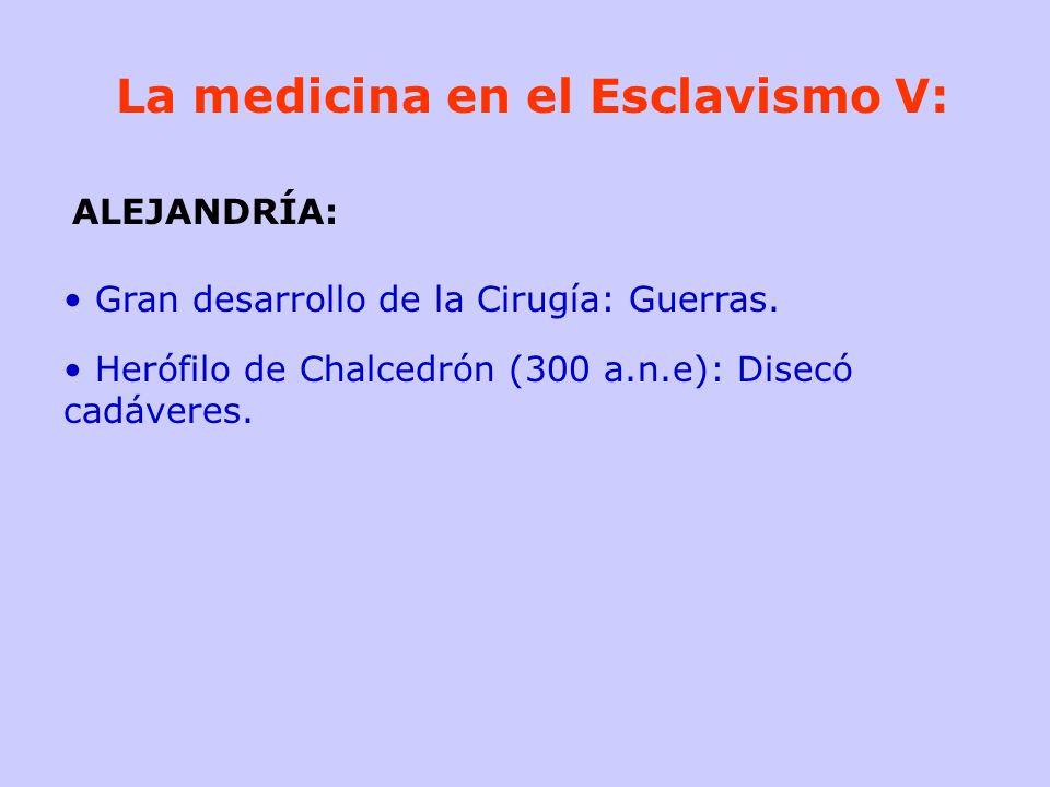 La medicina en el Esclavismo V: Gran desarrollo de la Cirugía: Guerras. Herófilo de Chalcedrón (300 a.n.e): Disecó cadáveres. ALEJANDRÍA: