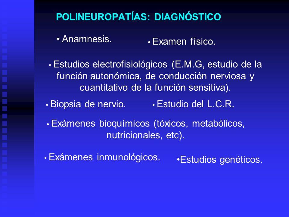 POLINEUROPATÍAS: DIAGNÓSTICO Anamnesis. Examen físico. Estudios electrofisiológicos (E.M.G, estudio de la función autonómica, de conducción nerviosa y
