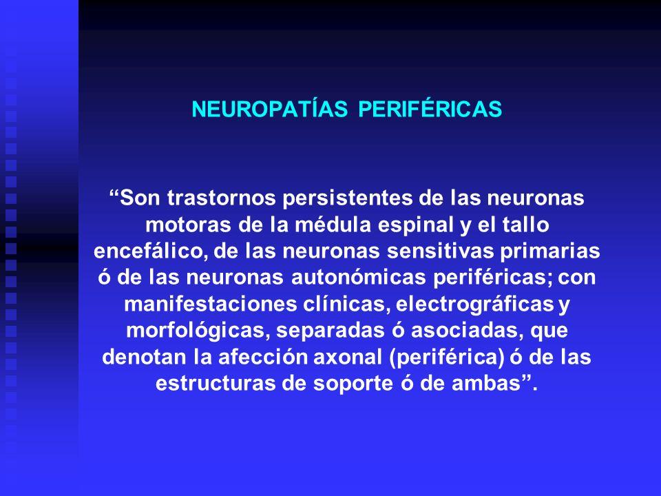 NEUROPATÍAS PERIFÉRICAS Son trastornos persistentes de las neuronas motoras de la médula espinal y el tallo encefálico, de las neuronas sensitivas pri