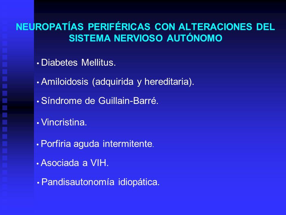 NEUROPATÍAS PERIFÉRICAS CON ALTERACIONES DEL SISTEMA NERVIOSO AUTÓNOMO Diabetes Mellitus. Amiloidosis (adquirida y hereditaria). Síndrome de Guillain-