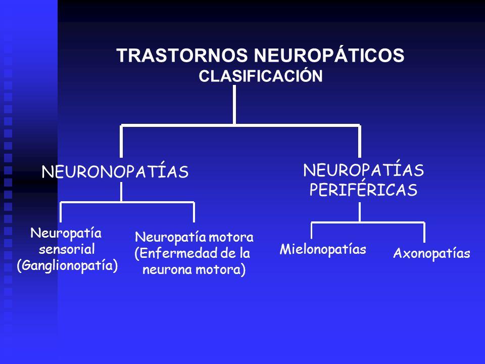 TRASTORNOS NEUROPÁTICOS CLASIFICACIÓN NEURONOPATÍAS NEUROPATÍAS PERIFÉRICAS Neuropatía motora (Enfermedad de la neurona motora) Mielonopatías Neuropat