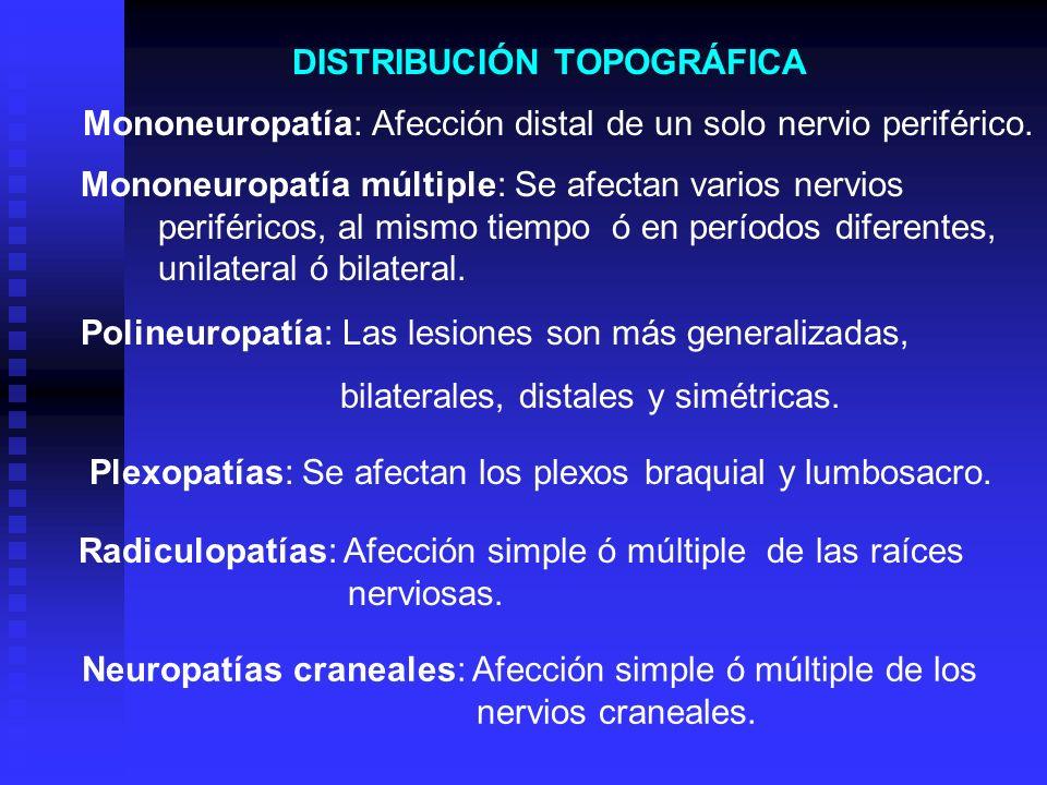 DISTRIBUCIÓN TOPOGRÁFICA Mononeuropatía: Afección distal de un solo nervio periférico. Mononeuropatía múltiple: Se afectan varios nervios periféricos,