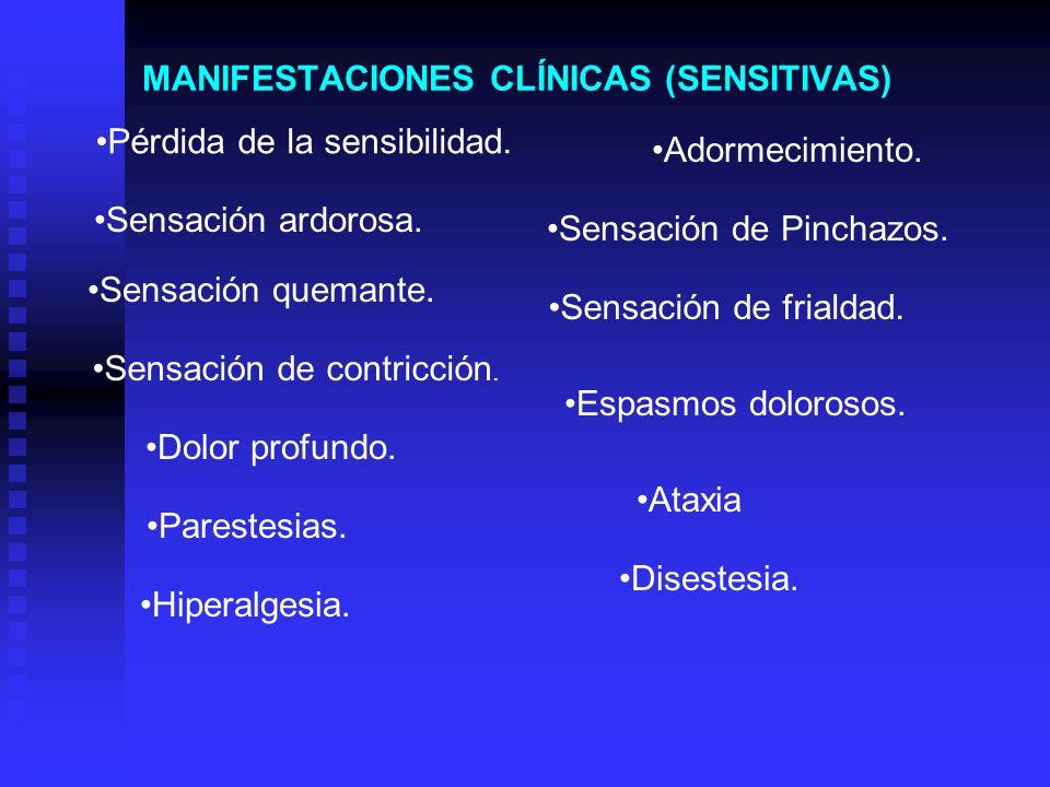 MANIFESTACIONES CLÍNICAS (SENSITIVAS) Pérdida de la sensibilidad. Adormecimiento. Sensación ardorosa. Sensación de Pinchazos. Sensación quemante. Sens
