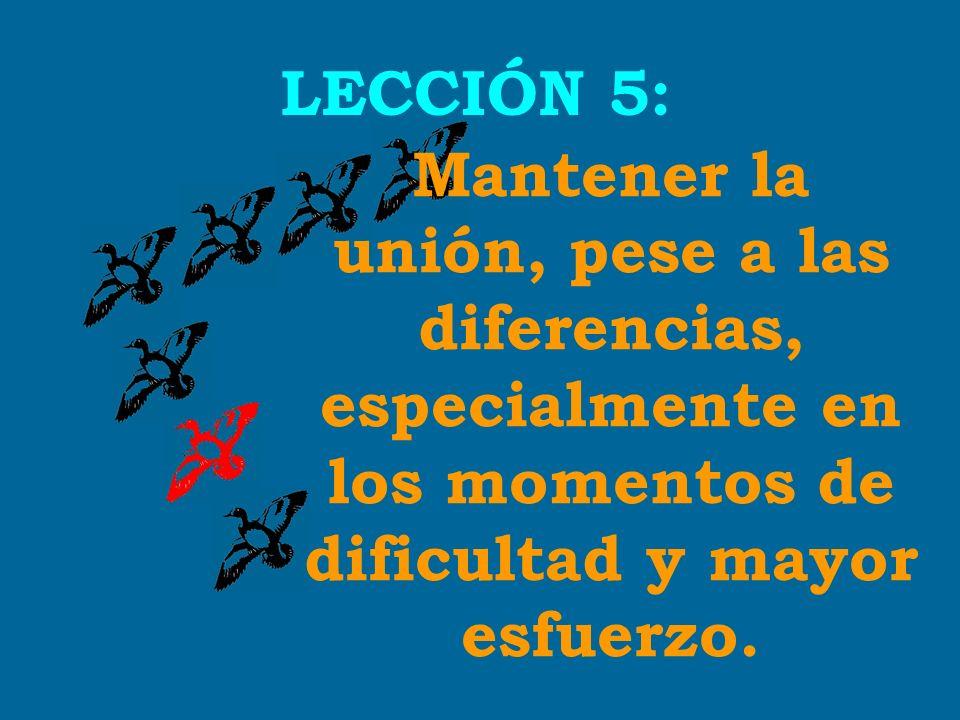 Mantener la unión, pese a las diferencias, especialmente en los momentos de dificultad y mayor esfuerzo. LECCIÓN 5: