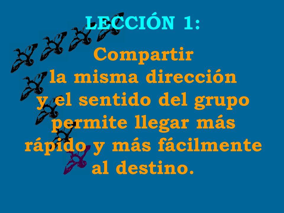 LECCIÓN 1: Compartir la misma dirección y el sentido del grupo permite llegar más rápido y más fácilmente al destino.