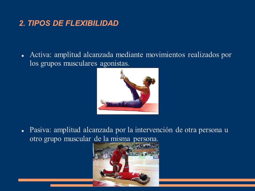 2. TIPOS DE FLEXIBILIDAD Activa: amplitud alcanzada mediante movimientos realizados por los grupos musculares agonistas. Pasiva: amplitud alcanzada po