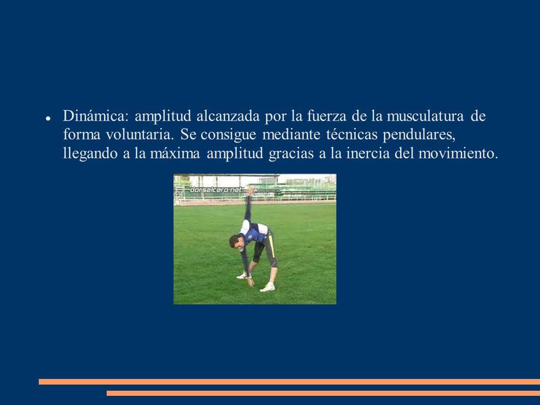 Métodos para el desarrollo de la flexibilidad: a)Métodos dinámicos: aquellos en los que se produce movimiento.