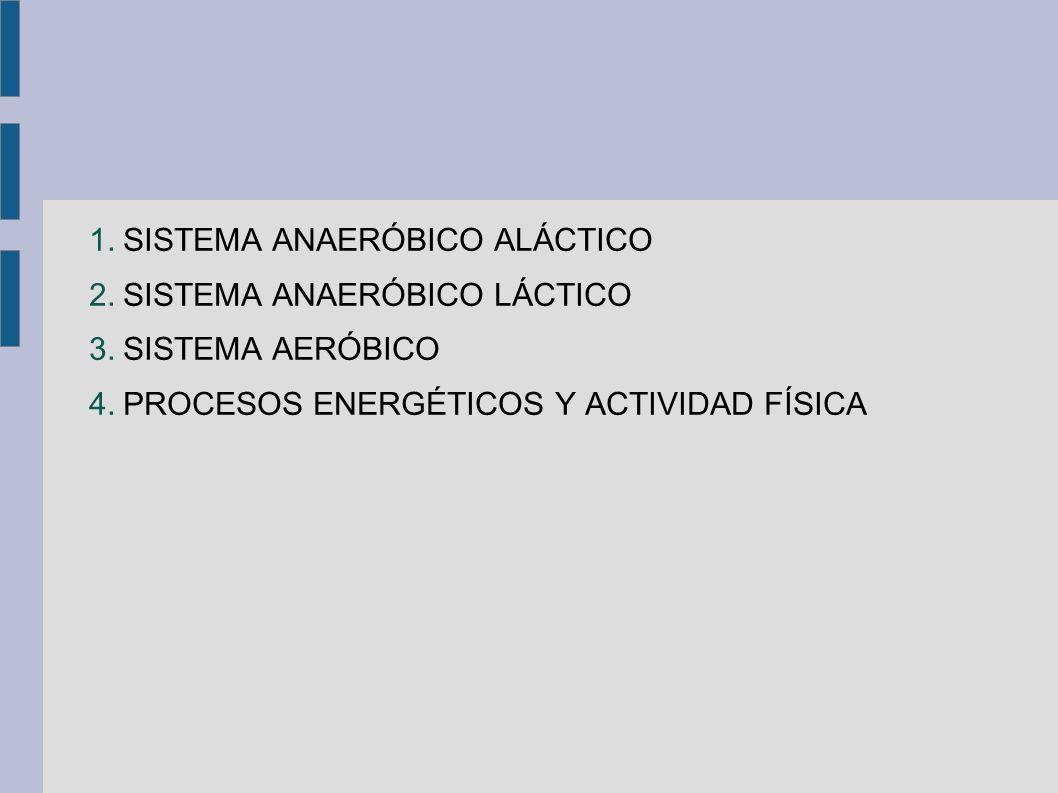 1.SISTEMA ANAERÓBICO ALÁCTICO 2.SISTEMA ANAERÓBICO LÁCTICO 3.SISTEMA AERÓBICO 4.PROCESOS ENERGÉTICOS Y ACTIVIDAD FÍSICA