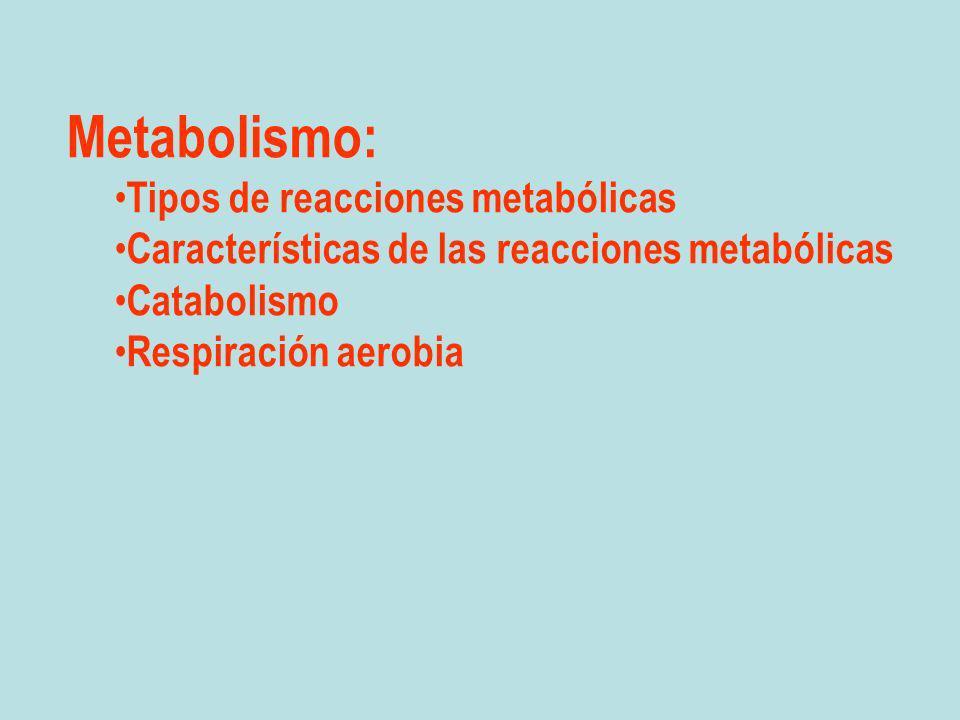Metabolismo: Tipos de reacciones metabólicas Características de las reacciones metabólicas Catabolismo Respiración aerobia