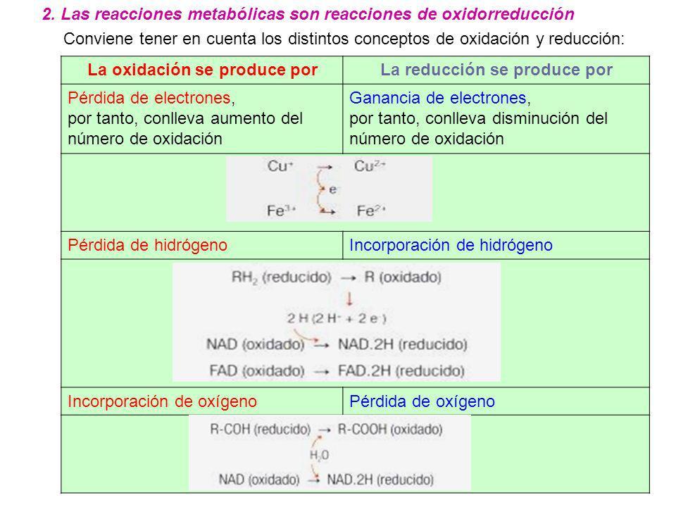 La oxidación se produce porLa reducción se produce por Pérdida de electrones, por tanto, conlleva aumento del número de oxidación Ganancia de electron