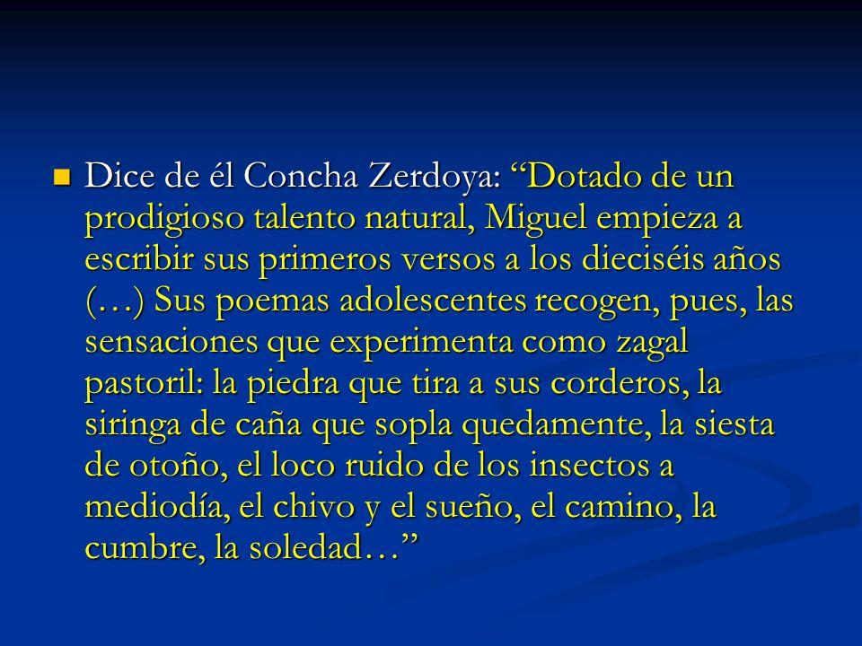 Dice de él Concha Zerdoya: Dotado de un prodigioso talento natural, Miguel empieza a escribir sus primeros versos a los dieciséis años (…) Sus poemas