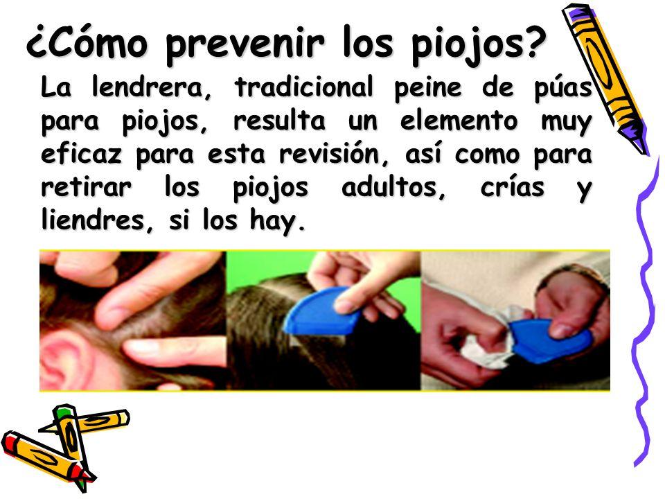 ¿Cómo prevenir los piojos.