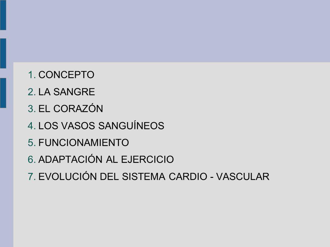 1.CONCEPTO 2.LA SANGRE 3.EL CORAZÓN 4.LOS VASOS SANGUÍNEOS 5.FUNCIONAMIENTO 6.ADAPTACIÓN AL EJERCICIO 7.EVOLUCIÓN DEL SISTEMA CARDIO - VASCULAR