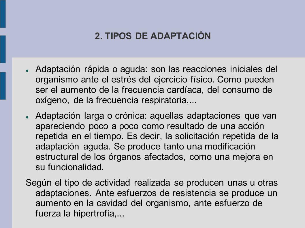 2. TIPOS DE ADAPTACIÓN Adaptación rápida o aguda: son las reacciones iniciales del organismo ante el estrés del ejercicio físico. Como pueden ser el a