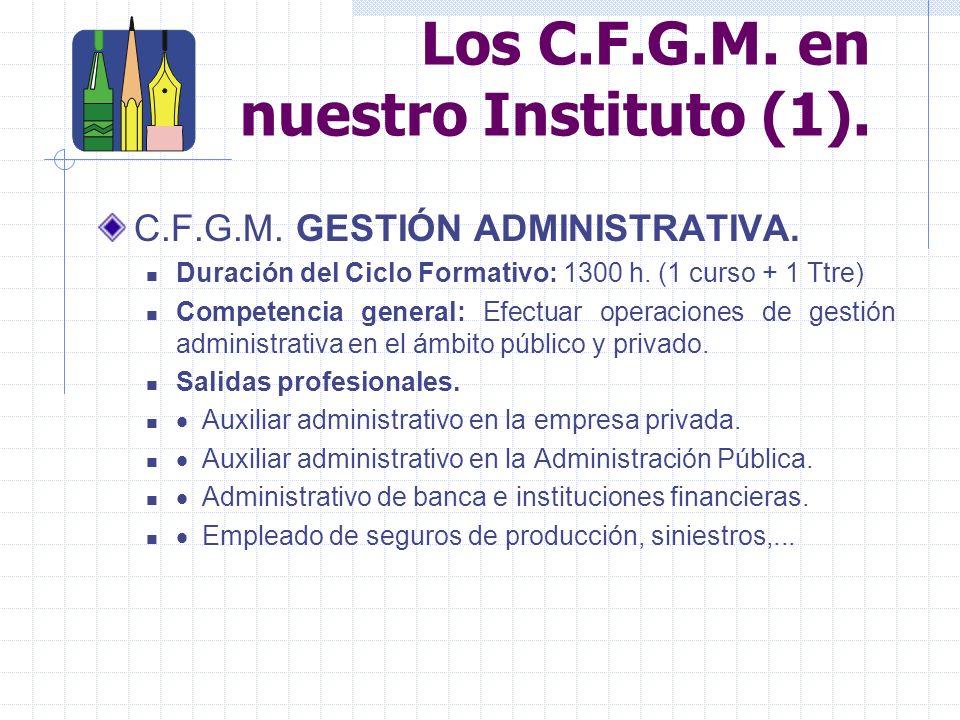 Los Ciclos Formativos de Grado Medio.