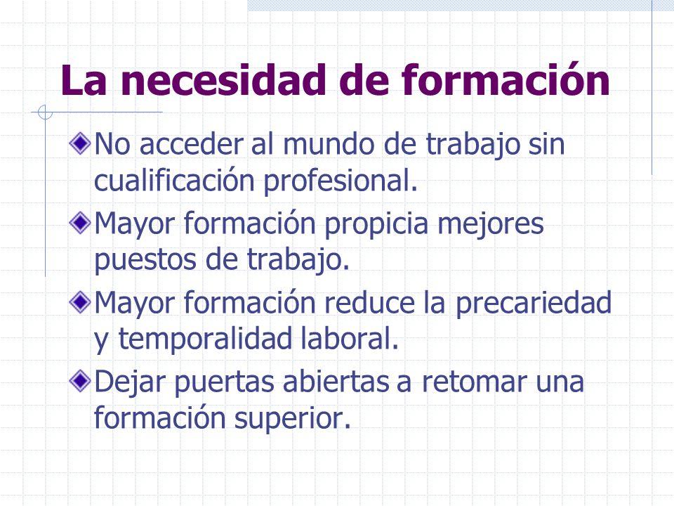 La necesidad de formación No acceder al mundo de trabajo sin cualificación profesional.