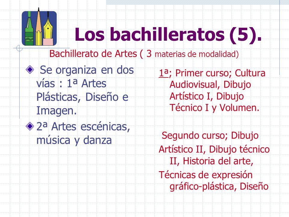 Los bachilleratos (5).Se organiza en dos vías : 1ª Artes Plásticas, Diseño e Imagen.