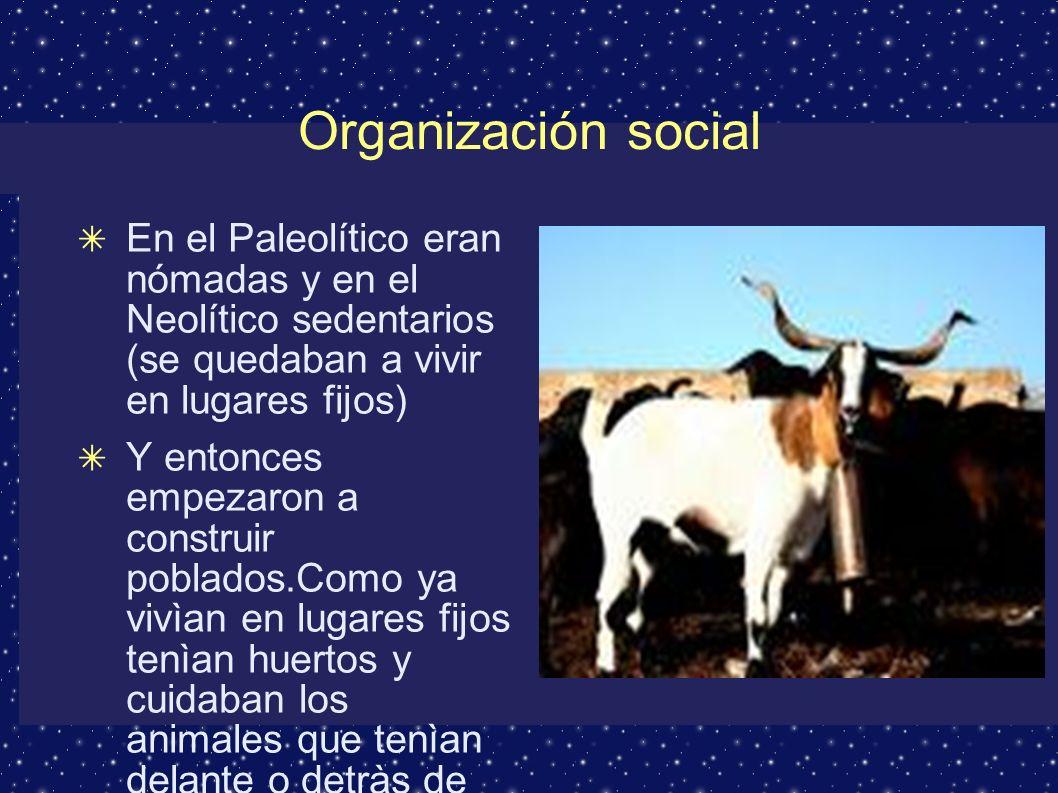 Forma de vida Se alimentaban con gachas de cereales, miel, leche y carne de cabra, de ternera o de oveja.