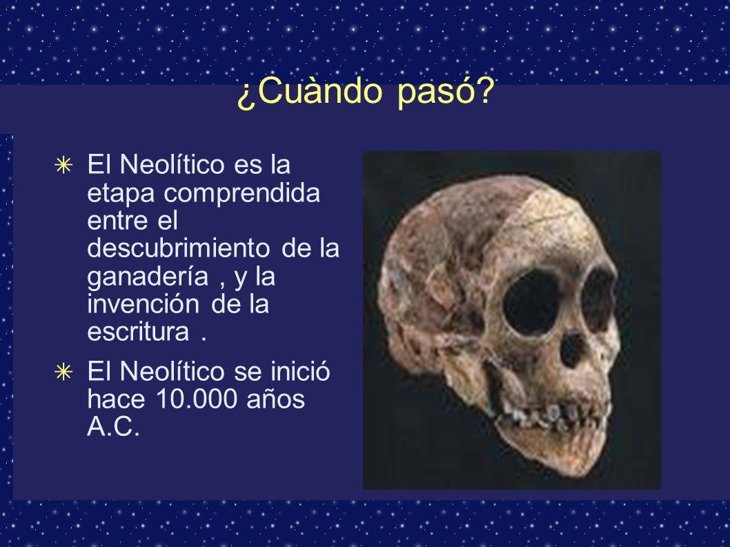 Neolítico ¿Cuándo pasó.