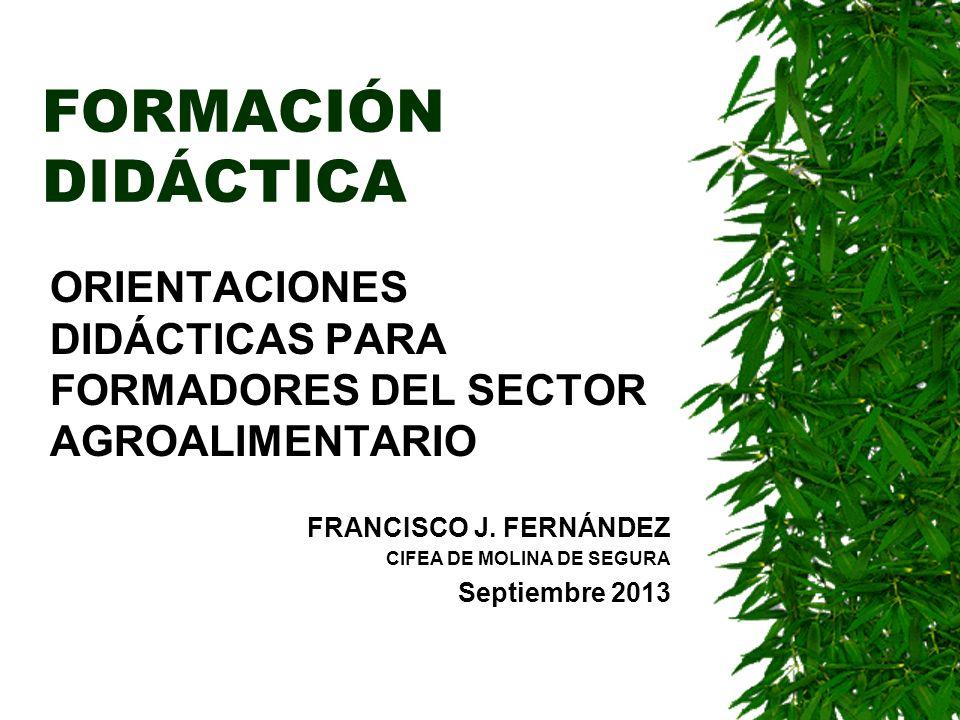 FORMACIÓN DIDÁCTICA ORIENTACIONES DIDÁCTICAS PARA FORMADORES DEL SECTOR AGROALIMENTARIO FRANCISCO J. FERNÁNDEZ CIFEA DE MOLINA DE SEGURA Septiembre 20