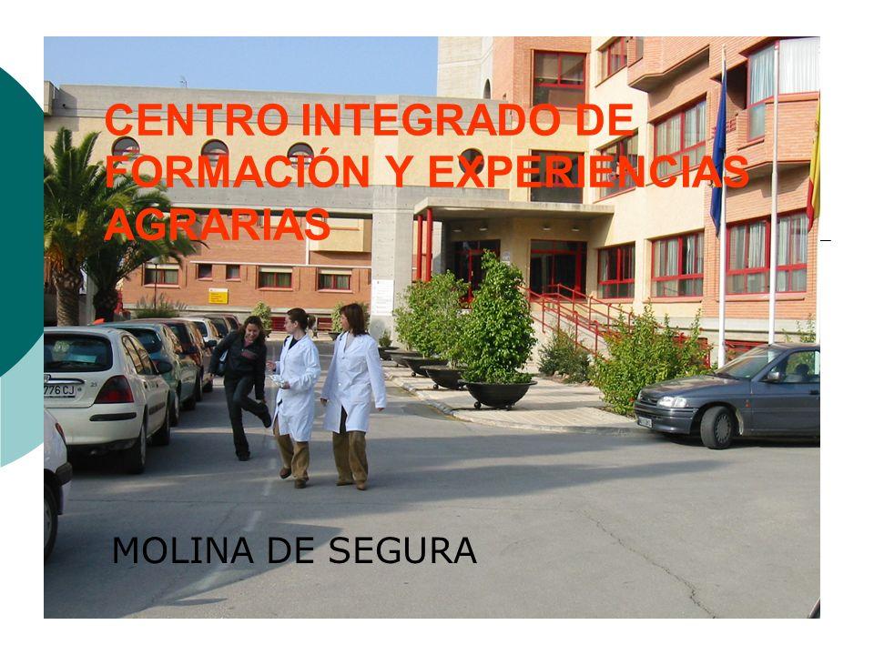 CENTRO INTEGRADO DE FORMACIÓN Y EXPERIENCIAS AGRARIAS MOLINA DE SEGURA